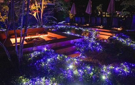 ホテル インディゴ 箱根・強羅の館内写真5