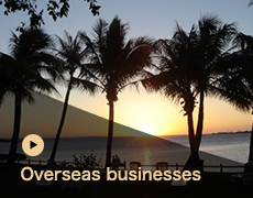 Overseas businesses